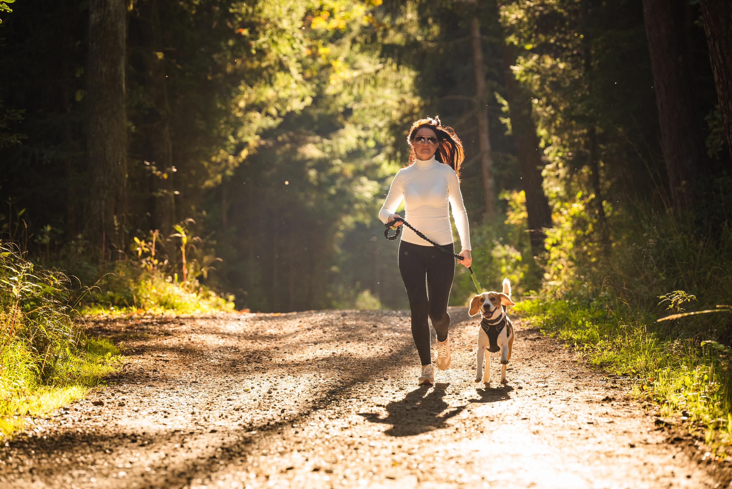 Dog Park Trail