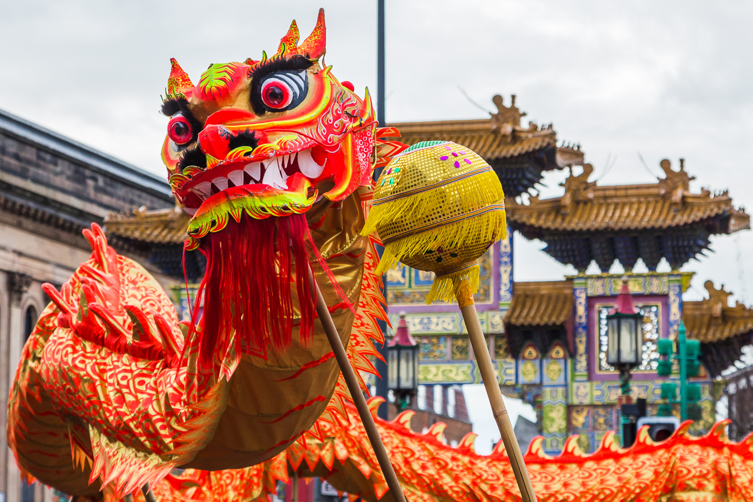 Houston Activities Lunar New Year